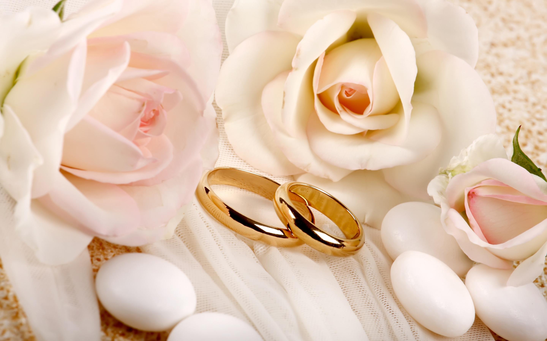 Как выбрать свадебные кольца